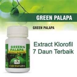 Manfaat Green Palapa
