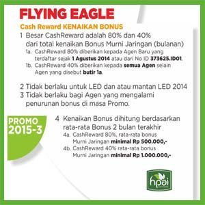 Promo Flying Eagle 2015