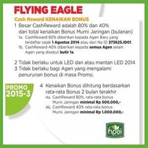 Promo Flying Eagle 2015