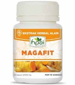 Produk HPA Indonesia Magafit Obat Maag