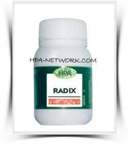radix kapsul hpai jual radixkapsul hni garansi original